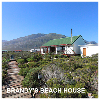 Brandy's Beach House